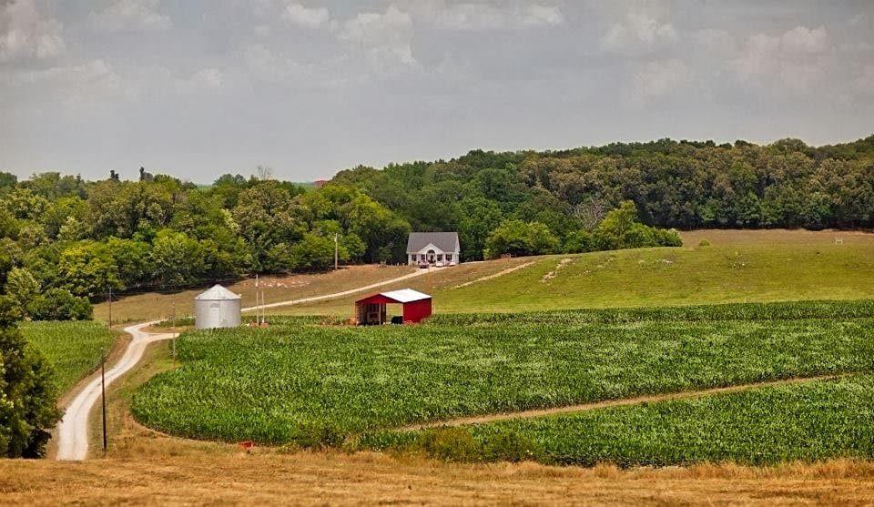 hickory-hills-farms-fields.jpg