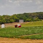 hickory-hills-farms-fields.jpg